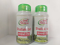 Шаллаки Ганга (Shallaki Shri ganga)