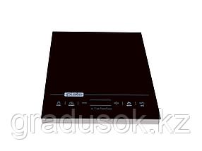 Индукционная плита IplateT-24