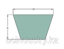 PHG A43 (1130-1092)   ремень  SKF