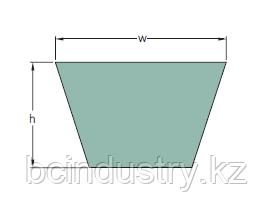 PHG B45.5 (1195-1156) ремень SKF