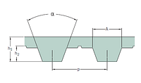 PHG T5- 300 -16   ремень SKF