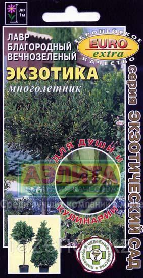 Лавр Экзотика вечнозеленый 0,5-1,5гр