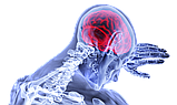 Трансфер фактор Реколл  для мозга, фото 2