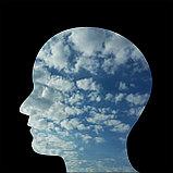 Трансфер фактор Реколл  для мозга, фото 3