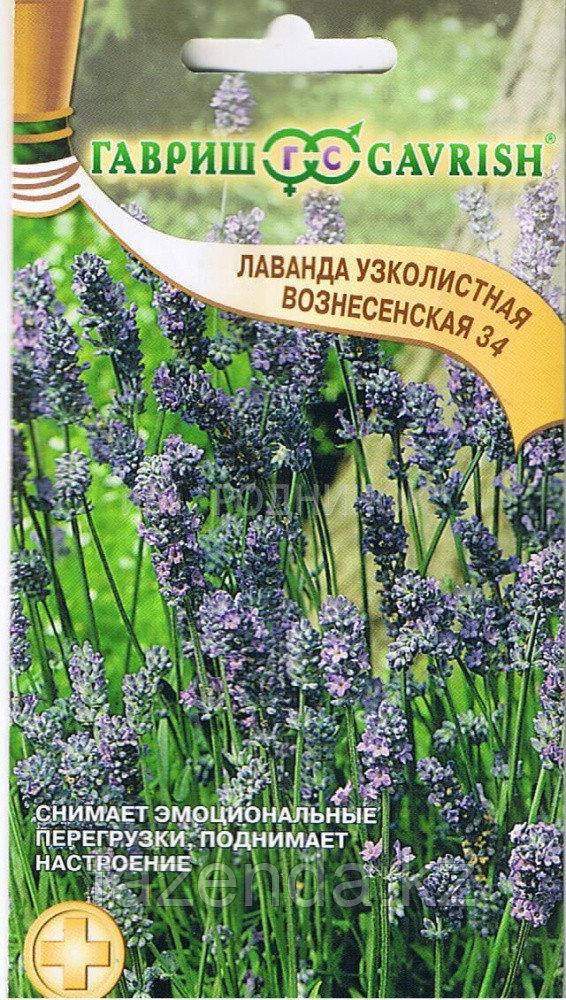 Лаванда Вознесенская 34  0,05гр/200