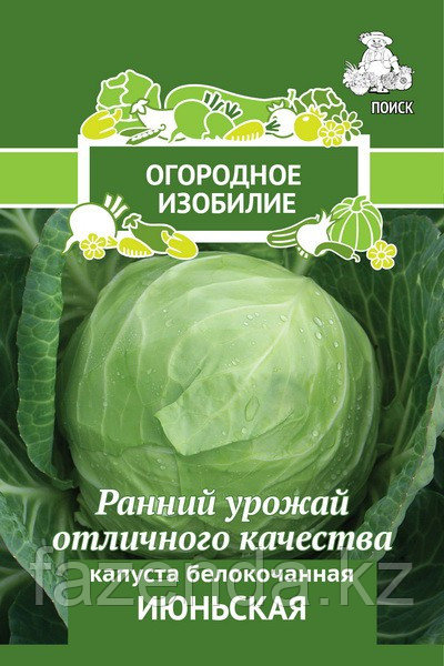 Капуста белокочанная Июньская 0,5гр /10