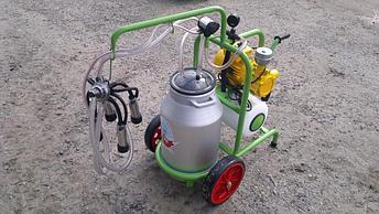 Доильный аппарат 1 бидон 1 пульсатор Agrolead (Турция) сухого типа, фото 2