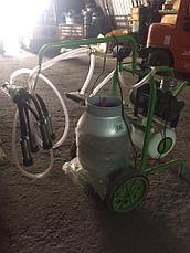 Доильный аппарат 1 бидон 1 пульсатор Agrolead (Турция) сухого типа, фото 3