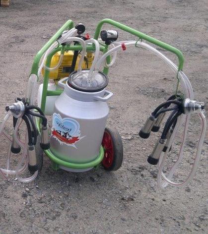 Доильный аппарат 1 бидон 2 пульсатор Agrolead (Турция) сухого типа, фото 2