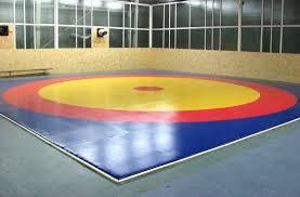 Ковер борцовский трехцветный 6х6м с покрышкой, толщина 5 см