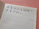 [Комплект 10 шт.] Тетрадь для записи иероглифов. Клетка 13 мм с пунктиром. 2688 клеток, фото 4