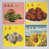 """Карточки с картинками """"Овощи и фрукты"""" на китайском языке, фото 3"""