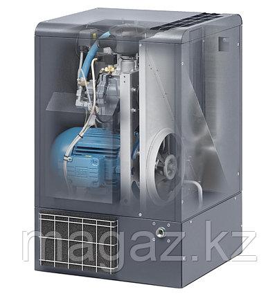 Винтовой компрессор SOGFD 55 , фото 2