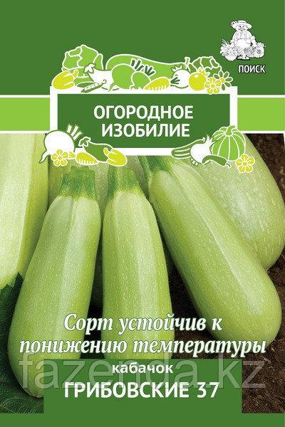 Кабачок Грибовские 37  2 гр