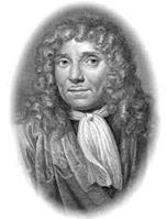 Антони ван Левенгук - изобретатель микроскопа