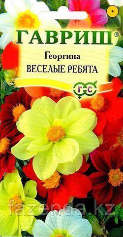 Георгина Веселые ребята 0,3г