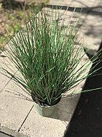 Трава искусственная декоративная под кашпо