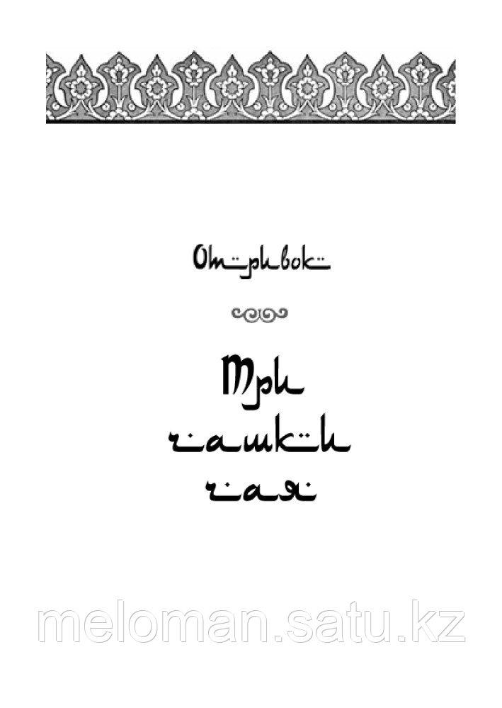 Мортенсон Г., Релин Д. О.: Три чашки чая. Проект TRUESTORY. Книги, которые вдохновляют - фото 3