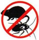 Дезинсекция от тараканов, фото 2