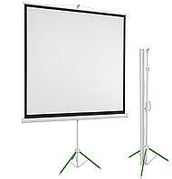 Переносной проекционный экран ECO 173см*173см