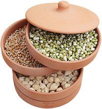 Семена для проращивания, смеси