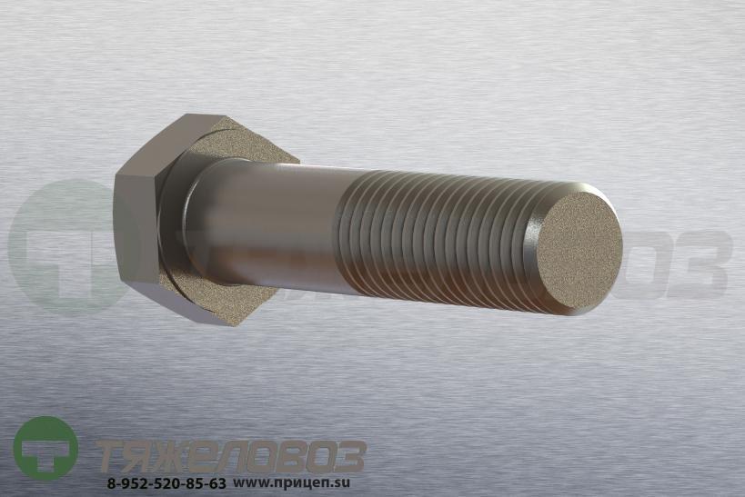 Болт амортизатора M 24 x 100 - 8.8 / SW 36 BPW 03.340.14.15.0