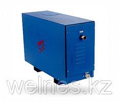 Парогенератор для паровой комнаты, 12 кВт