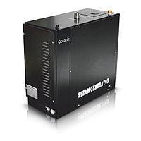 Парогенератор для паровой комнаты, 12 кВт (с системой автопромывки)