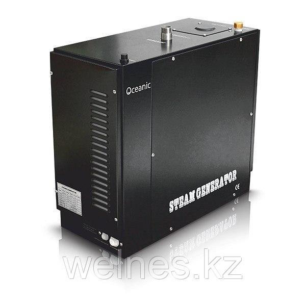 Парогенератор для паровой комнаты, 15 кВт (с системой автопромывки)