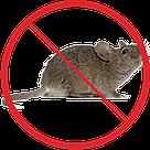Борьба с мышами, фото 2