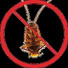 Уничтожение тараканов, фото 2