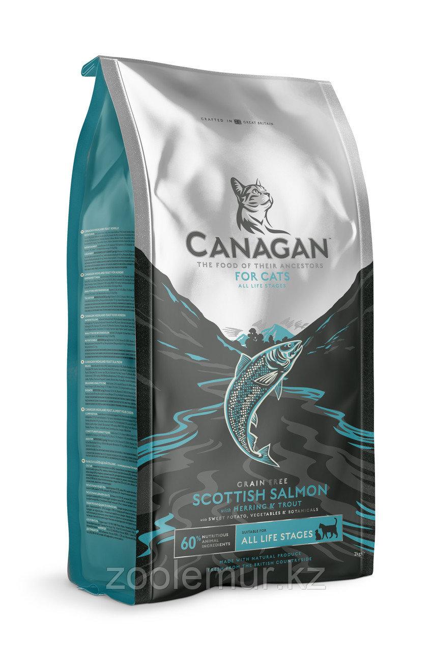 CANAGAN Grain Free, Scottish Salmon, корм 4 кг для кошек всех возрастов и котят, Шотландский лосось
