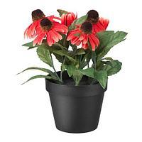 ФЕЙКА Искусственное растение в горшке, д/дома/улицы, Рудбекия красный, фото 1