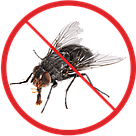 Борьба с мухами, фото 2