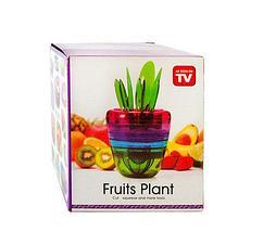 Набор для очистки и нарезки фруктов Fruits Plant [14 предметов], фото 2