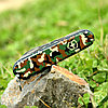 Нож складной армейский Victorinox Huntsman, Кол-во функций: 15 в 1, Цвет: Хаки, (1.3713.94), фото 5