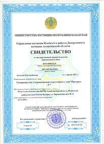 Свидетельство о Государственной Регистрации 1