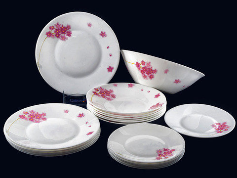 Сервиз столовый Luminarc Essence Pink Bloom J3531, фото 2