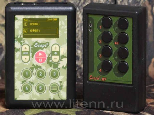 http://www.litenn.ru/upload/medialibrary/b06/eger8du.jpg