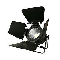Прожектор театрального света LED PAR (теплый свет, холодный свет)