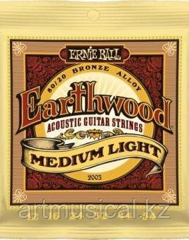 Струны для акустической гитары 12-54 Ernie Ball 2003 Earthwood 80/20 Bronze