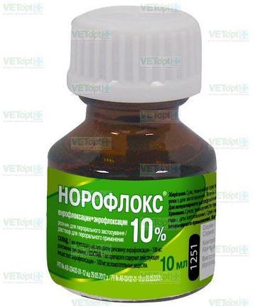 Норофлокс 10 мл, фото 2