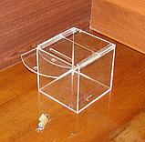 Ящик для пожертвований 144х144х144, фото 3