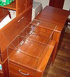 Конфетница для мармеладов конфет орехов 600х300х200-3 ячееки с крышкой, фото 3