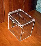 Ящик для пожертвований 150х103х150, фото 4