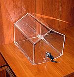 Ящик для пожертвований Домик 200х258х200, фото 3