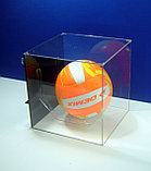 Подставка для мяча настенная, фото 4