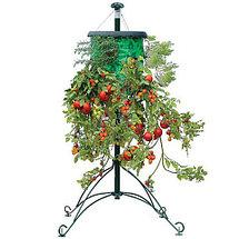 Плантатор для овощей и фруктов Topsy Turvy, фото 3