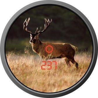 Бинокль-дальномер охотничий Zeiss Victory RF 8x45 T, Относительная яркость: 31,6, Сумеречное число: 19, Дистан