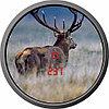 Бинокль-дальномер охотничий Zeiss Victory RF 8x56 T, Относительная яркость: 49, Сумеречное число: 19, Дистанци, фото 3
